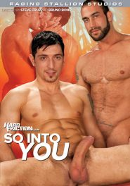 So Into You DVD Cover