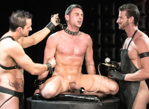 This Will Hurt : Phenix Saint, Rusty Stevens, Tristan Phoenix