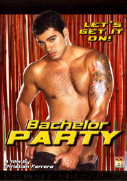 bachelor party DVD Cover