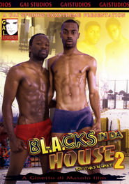 Blacks In Da House #02 DVD Cover
