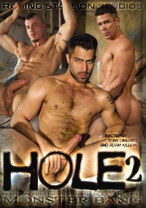 Hole 2 DVD Cover