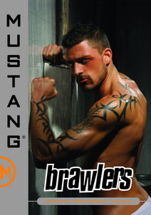 Brawlers DVD Cover