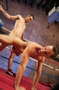 Knockouts And Takedowns picture 14