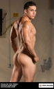 Topher DiMaggio picture 3